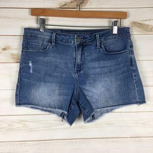Raw Hem Jean Denim Cut Off Shorts